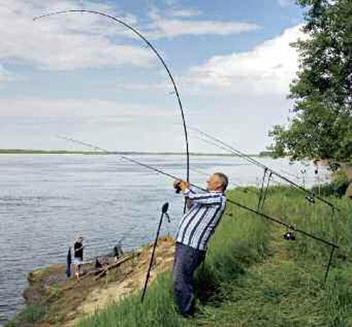 как правильно подсекать рыбу на удочку